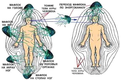 влияние паразитов на организм человека